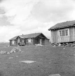 Storhølisætra, Skåbu, Nord-Fron, Oppland, juli 1964. Seterhu