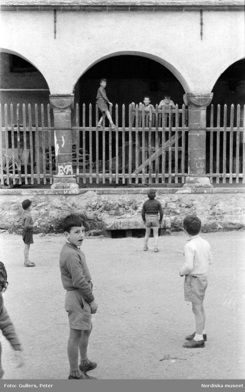 Pojkar leker på gata och klättrar på staket. Levanto, Italien