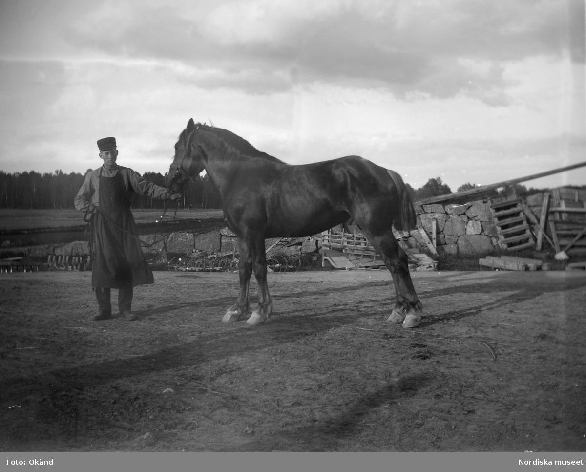 En man iklädd arbetsförkläde håller en häst. Bilden tagen på Julita gård i Södermanland.