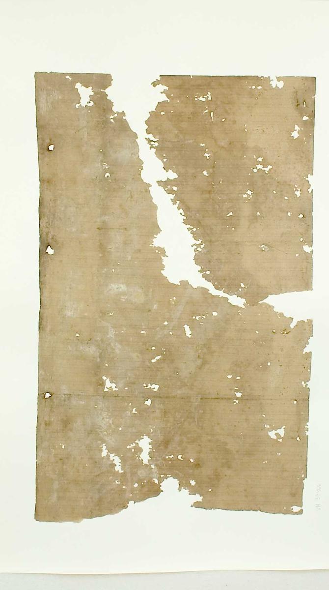 Tapetprov med tryckt mönster, beige. Handskriven text på baksidan av kartongen: Nr  32 Kv. Svan nr 3 Klostergatan 15 Boningshus mot gatan  b.v. rum 1 3.