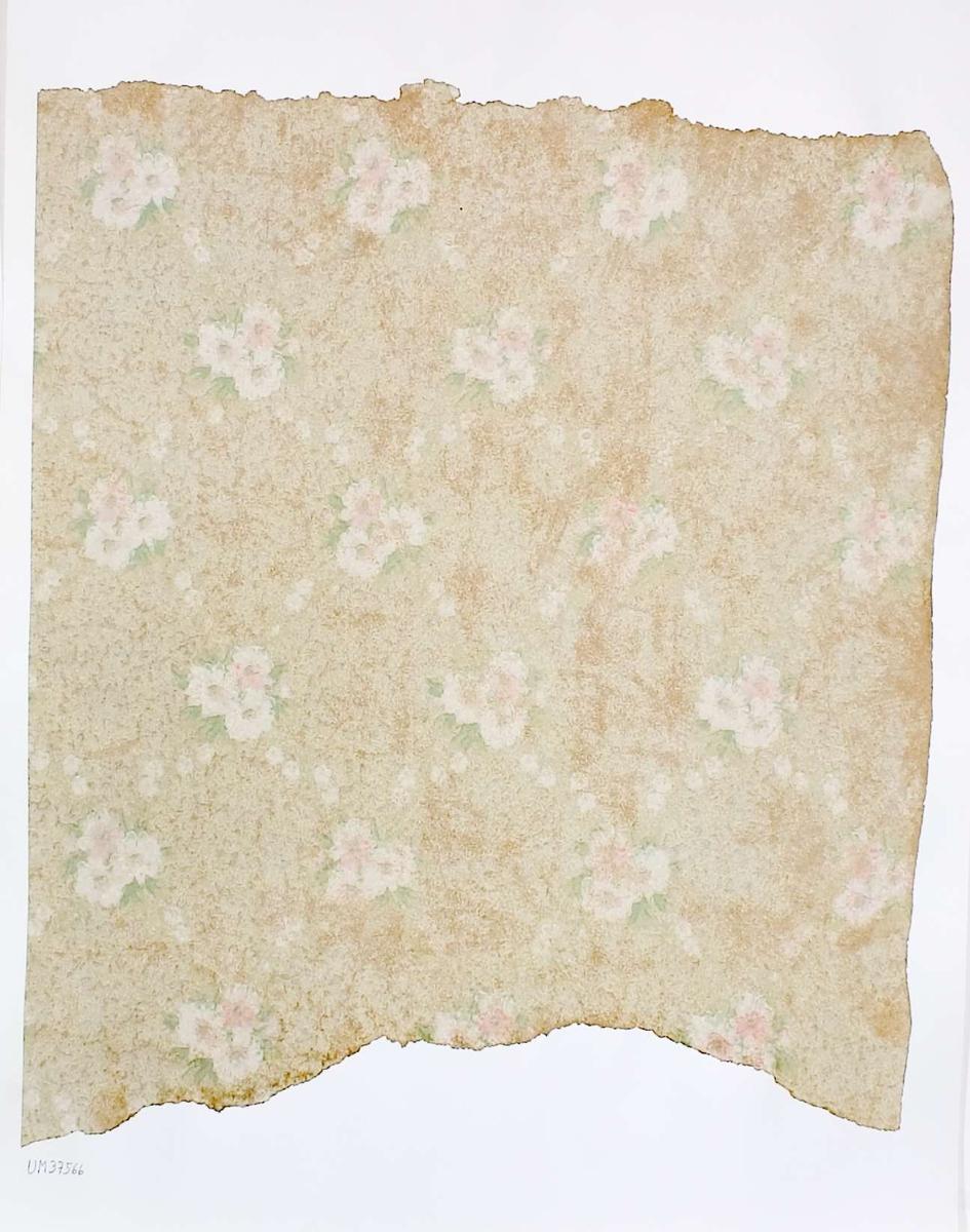 Tapetprov med tryckt blommönster, grön-, vit och rosamönstrad. Handskriven text på baksidan av kartongen: Nr 54 Kv. Svalan nr. 7 gatuhus n.b. rum 4 (övre lager) 1.