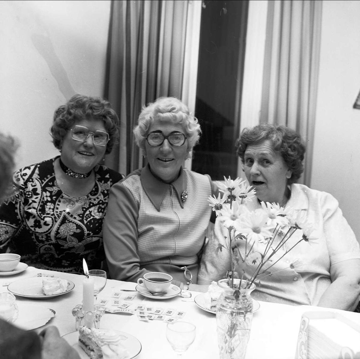 DHR-fest i Tierp, Uppland december 1972