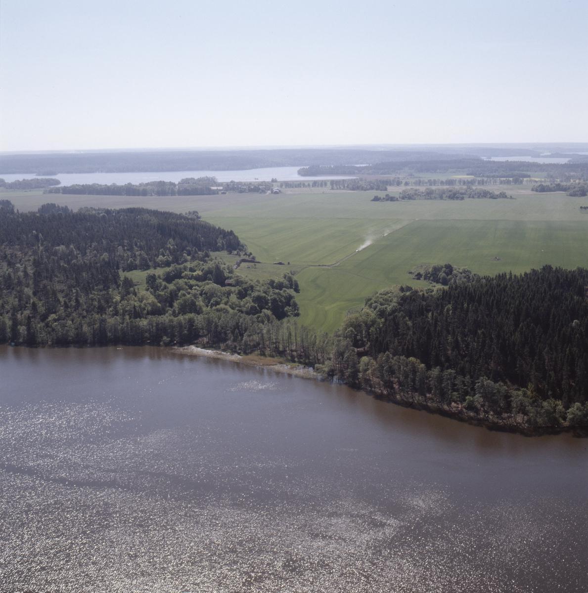 Vy över Lårstavikens södra strand i Mälaren, Uppland, juni 1989