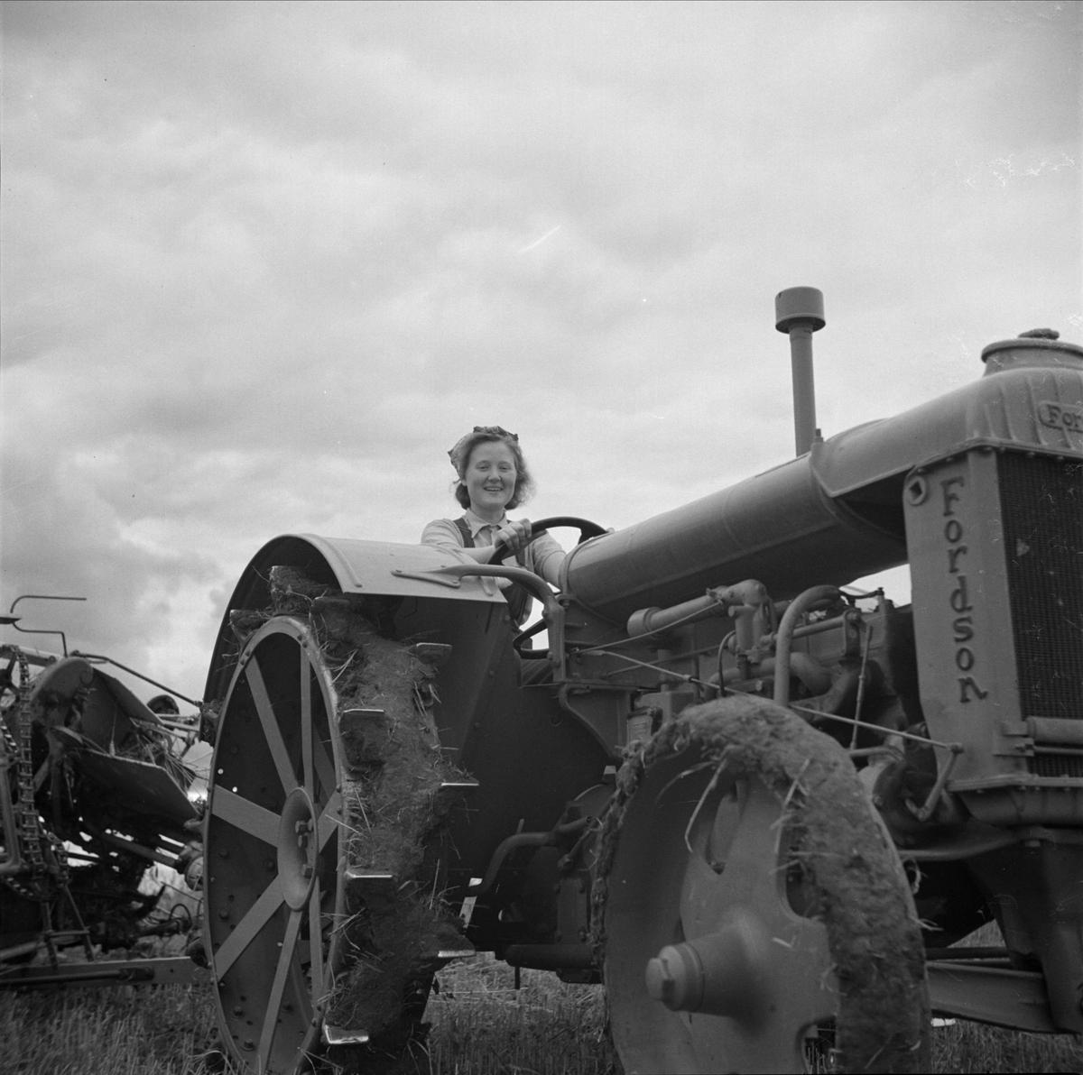 Ung kvinna på traktor på beredskapsläger i Skuttunge, Uppland 1940