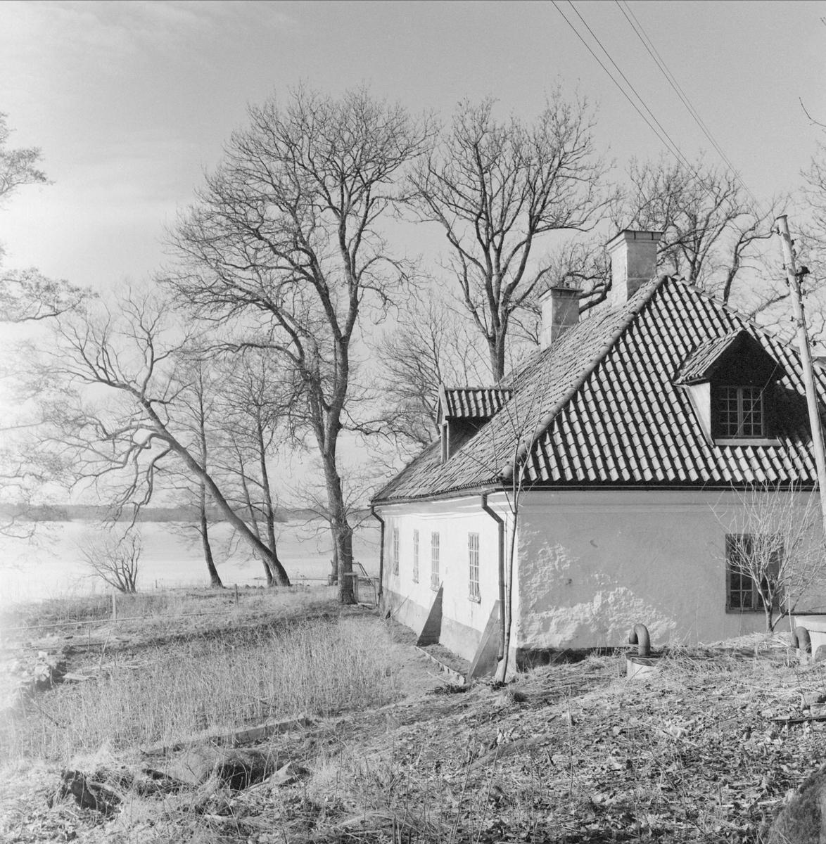 Bränneriet vid Lårstavikens strand, Wiks slott, Balingsta socken, Uppland 1965
