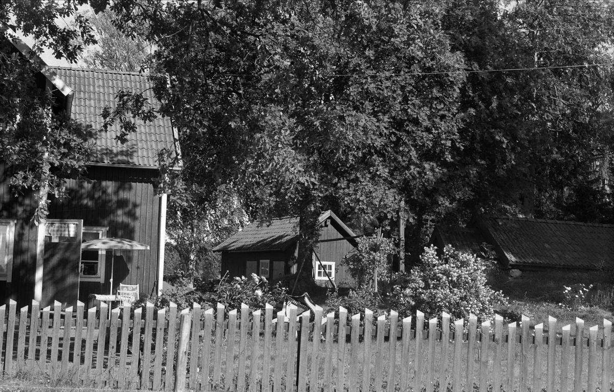 Bostadshus och uthus med vedbod, Lund 3:2, Björklinge socken, Uppland 1976