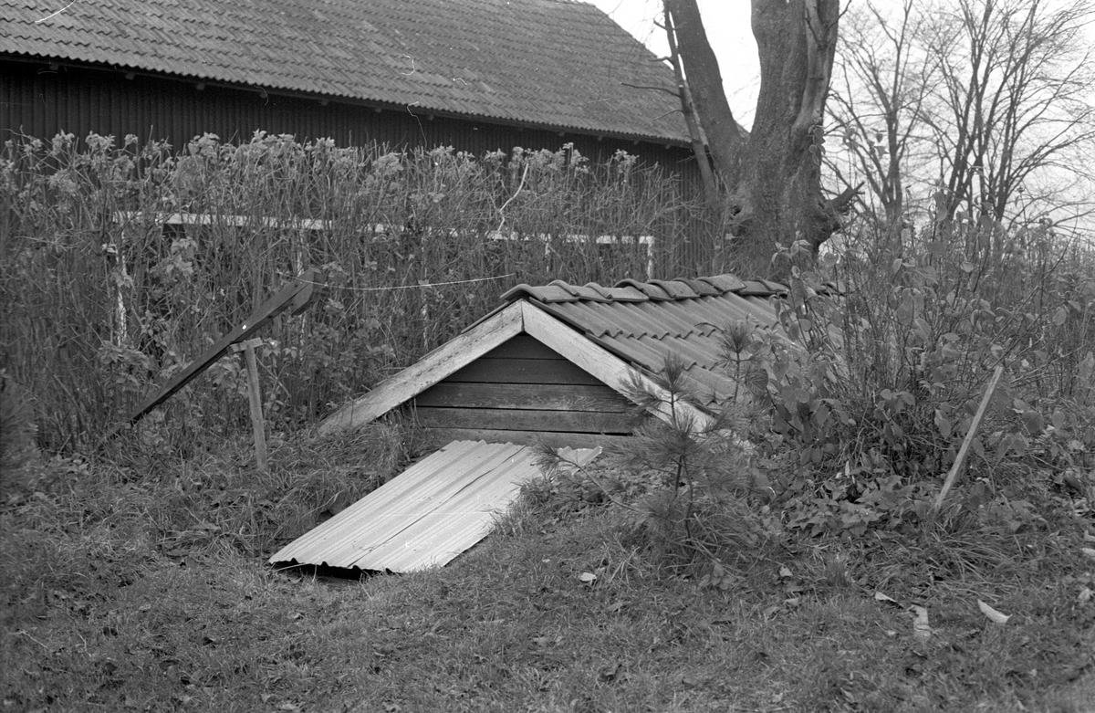 Källare, Sällinge 2:8, Sällinge, Danmarks socken, Uppland 1978
