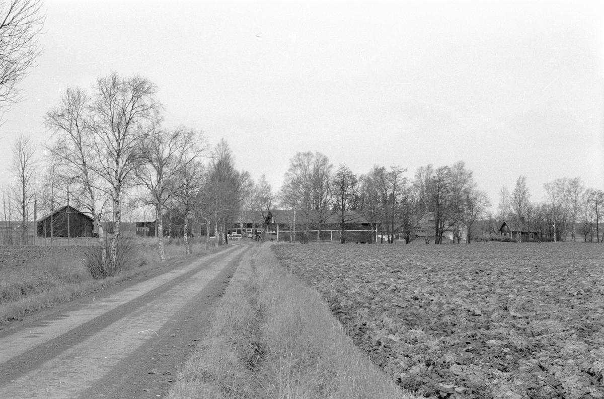 Vy från öster över Hånsta 3:4 med flera, Hånsta, Lena socken, Uppland 1978