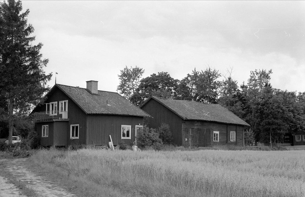 Boningshus och uthus, Funbo Krisslinge 6:1, Krisslinge, Funbo socken, Uppland 1982