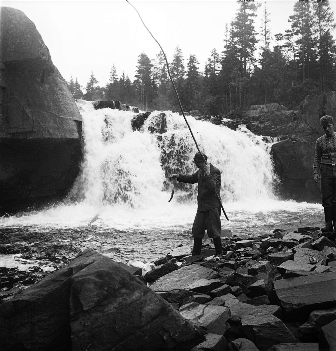 Fiske vid fors, Norge 1947