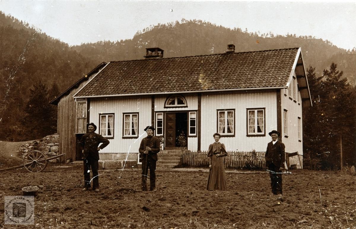 Potoethøst på Steggan Ytre Øydna. Grindheim Audnedal.
