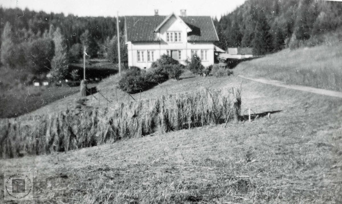 """Garden """"Der Aust"""" på Seland. Grindheim Audnedal."""
