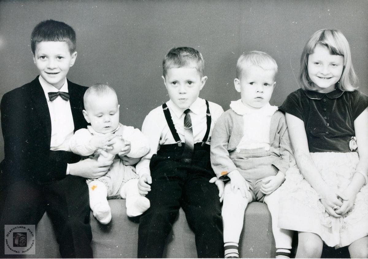 Portrett av fem søsken Byremo. Audnedal.