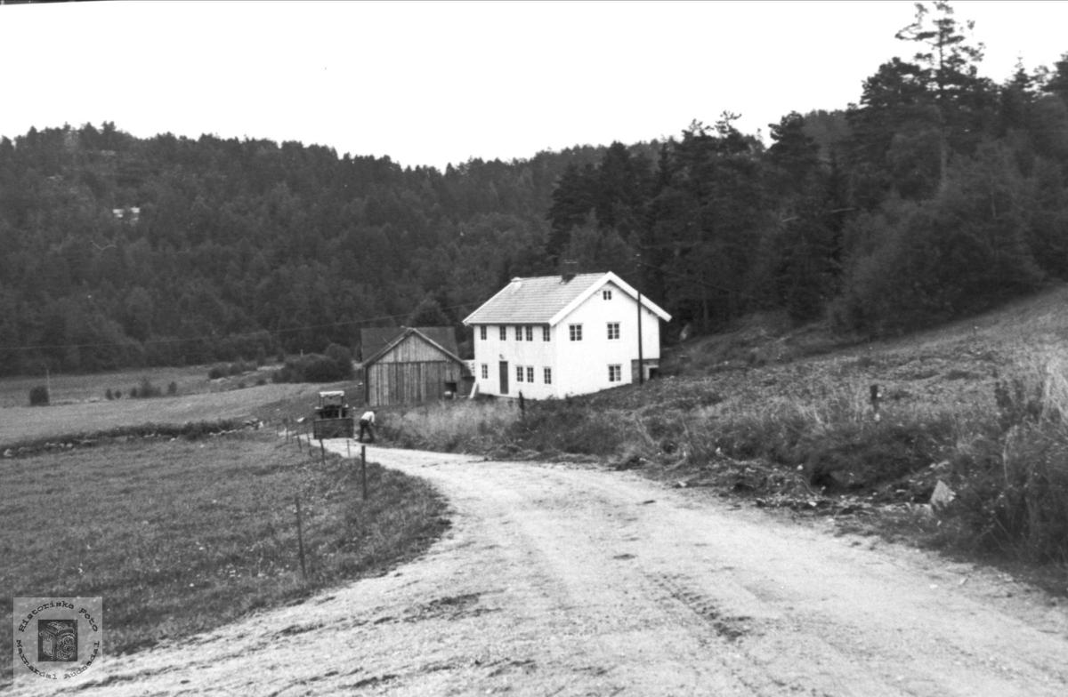 """Den aust"" på Roland i Bjelland."
