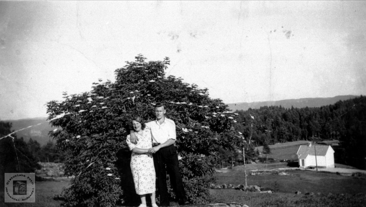 Sofie og Torjus i Heddåsen