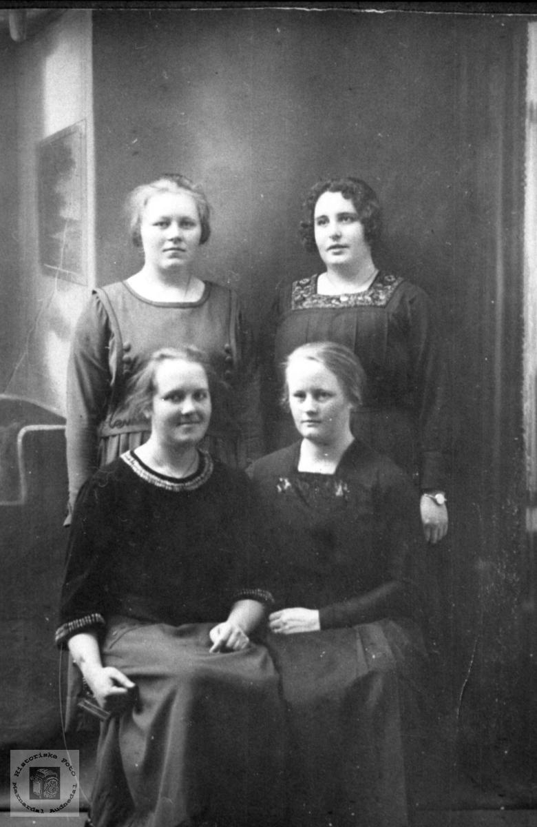 Portrett av fine unge damer. Minst en fra Røynesdal, Bjelland.