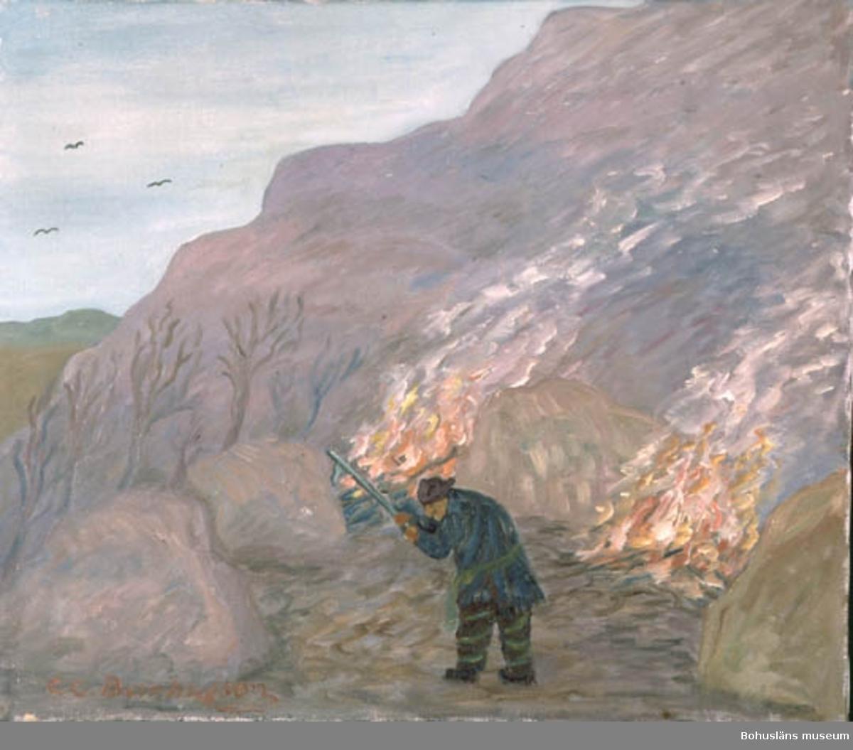 """Bohusläns museum förvaltar 526 målningarna av Carl Gustaf Bernhardson.  Flera målningar visas i Bernhardsonrummet, i basutställningen på andra våningen.  Baksidestext:  """"BrännäQwinnan. Den första odlingen och odlare på denna ö var en Kvinna. Troligen hade Hon en tid vistats På Island . För traditionen förtäljer att Hon kom därifrån omkr. år 900-talet, och sannorligt föds här och följt vikingar härifrån till Island. Vikingarna (Folk som bodde i vikarna). Stället heter även i dag Brännetomta. Folklivsskildring Skaftö.  C.G. Bernhardson.  Gamla Molands saga.""""  Ordförklaring: Moland = Morlanda, Orust.  Om upphängningsanordningar på folklivsmålningarna se Tillst & Vård under detta nummer.  Litteratur: Bernhardson, C.G.: Bohuslänsk sed och folktro, Uddevalla , 1982, s. 17. Titel i boken: Brännäqwinnan."""
