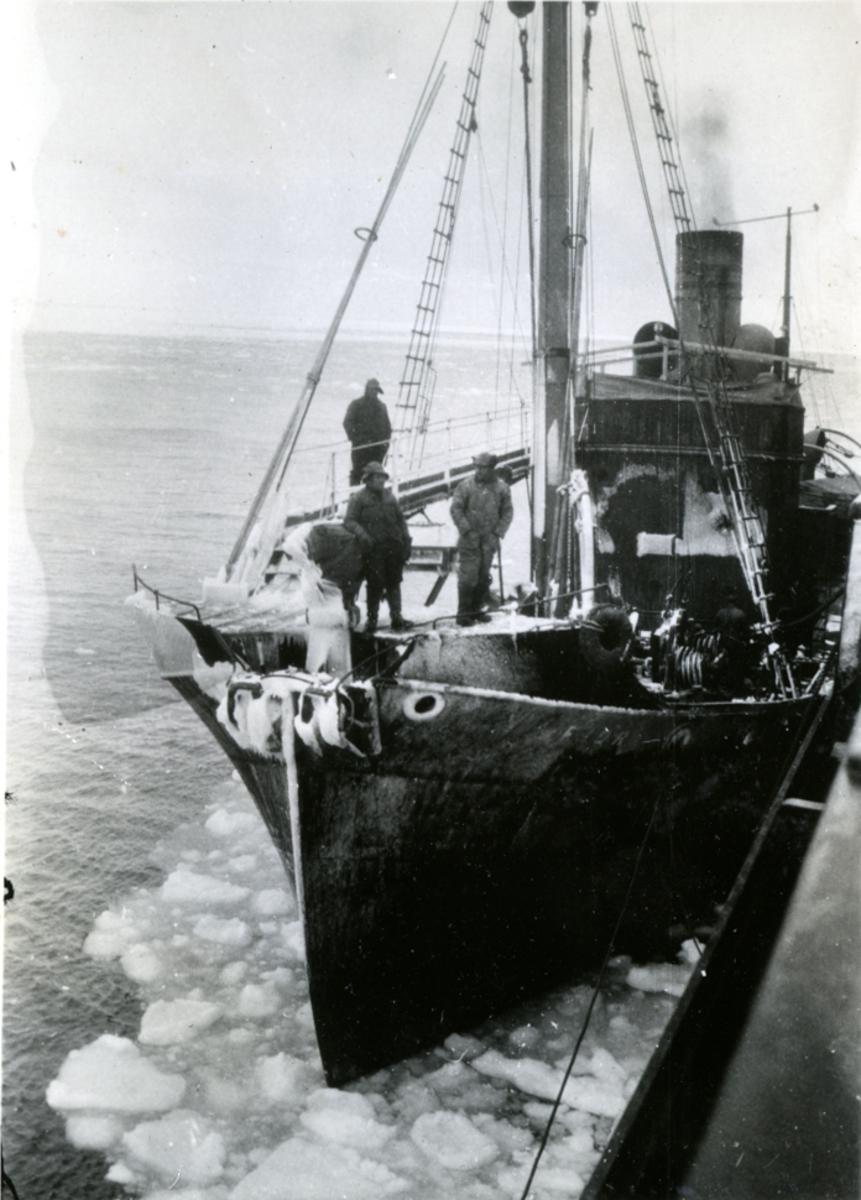 Hvalbåten 'Fjord' (b.1925)