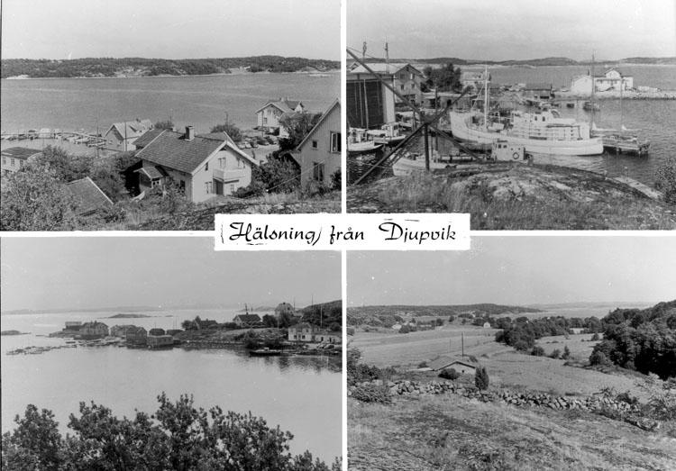 """Enligt AB Flygtrafik Bengtsfors: """"Djupvik"""".      ::"""