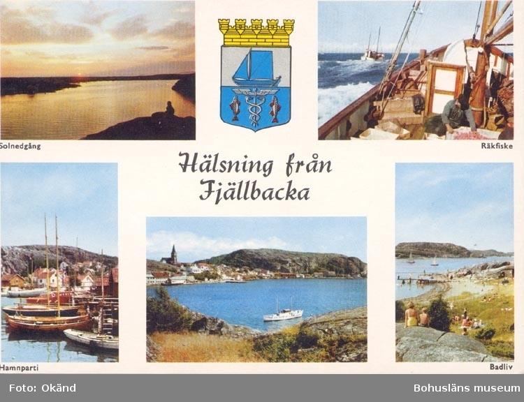 """Tryckt text på kortet: """"Hälsning från Fjällbacka"""". """"Solnedgång, Räkfiske, Hamnparti, Badliv""""."""