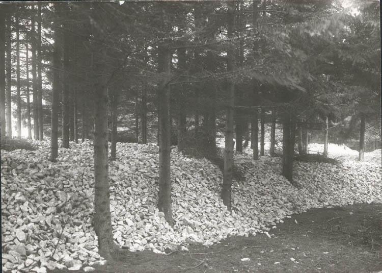 """Noterat på kortet: """"Hogen Tegneby."""" """"Lagring av macadam vid Hogen, Orust."""" """"Foto (C98) Dan Samuelson 1924. Köpt av dens. Dec. 1958."""""""