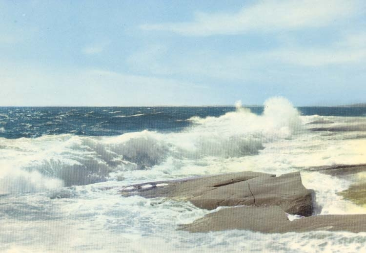"""Tryckt text på kortet: """"Västkusten. Havet i storm."""""""