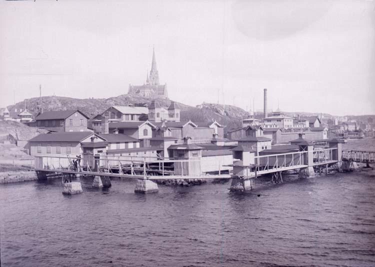 """Enligt text som medföljde bilden: """"Lysekil, Bassinen April 1911."""" ::"""