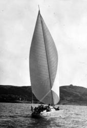 "Ljungströmsbåten Twing-Wing 620 ""Zinganee"" under segel"