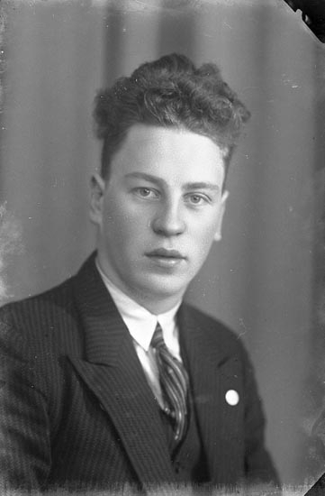 """Enligt fotografens journal nr 4 1918-1922: """"Nilsson, Hjalmar Höviksnäs""""."""