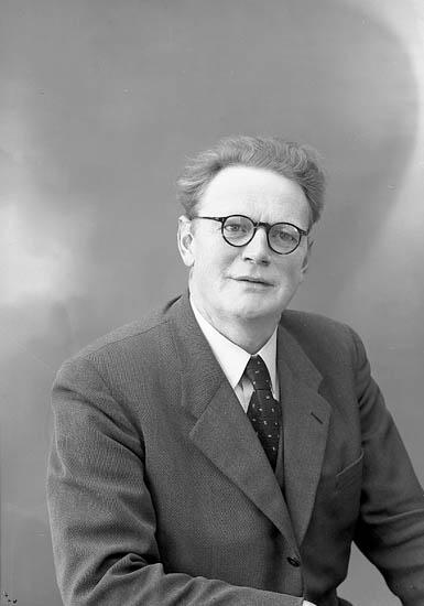 """Enligt fotografens journal nr 8 1951-1957: """"Warmenius, Herr Stora Höga""""."""
