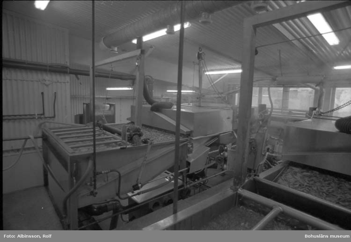 """Enligt fotografens noteringar: """"Räkskalningsmaskinen med vidvinkel."""" Fototid: 1995-11-16."""