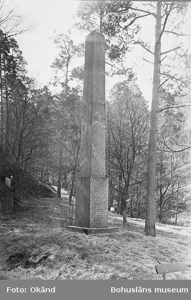 """Inskriptionen lyder: """"Minnesvård, besluten av Gustaf III upprest av Carl XIII, mdcccxv åt frih. Clas Alströmer på hvars bekostnad denna allmänna väg blifvit anlagd""""."""