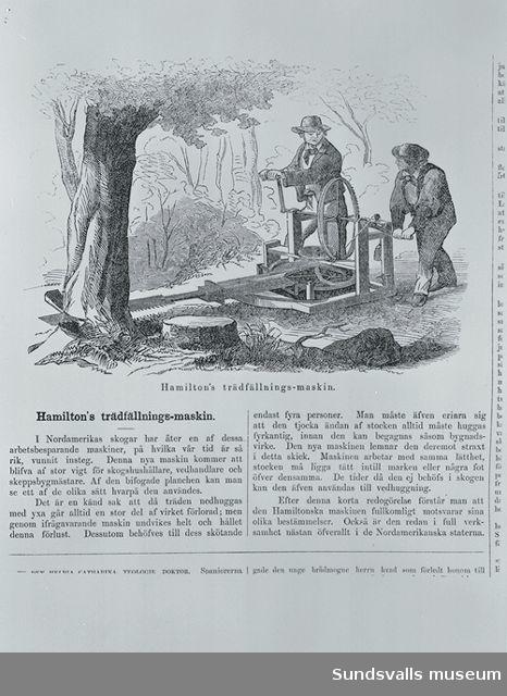 Tidningsartikel om Hamiltons trädfällningsmaskin.