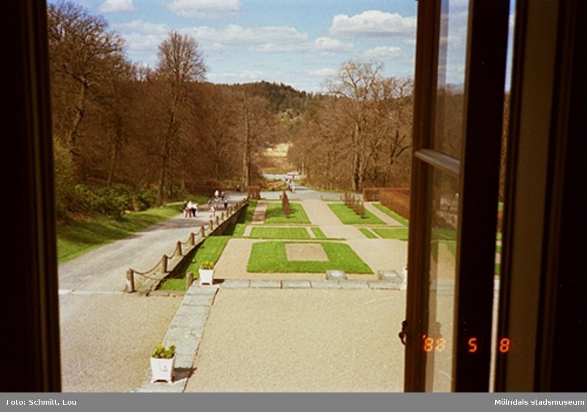 En del av parken på Gunnebo slotts vänstra framsida. Bilden är tagen inifrån och ut genom ett öppet brunt fönster. Långt i bakgrunden skymtar man John Halls väg.