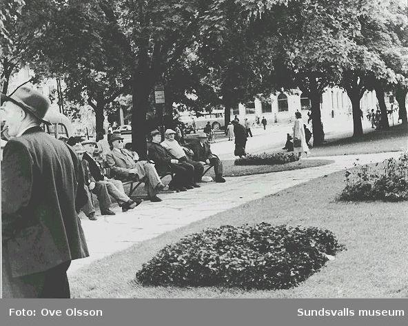 """Text: """"Esplanaden i stadens mitt med Sundsvalls Enskilda Bank i bakgrunden""""."""