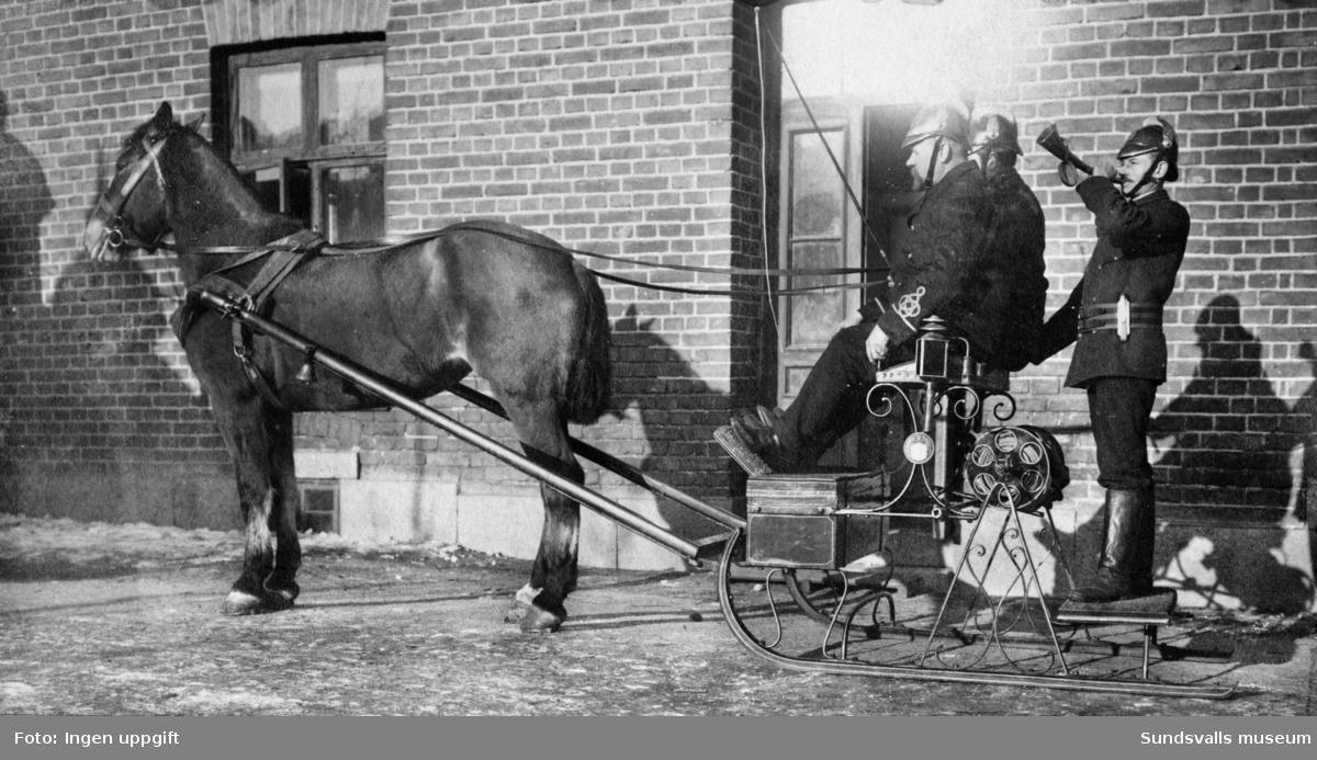 Brandmän redo att rycka ut med häst och brandsläde. Privata bilder med brandchefen för Sundsvalls brandkår Gustaf Hellgren och hans familj.