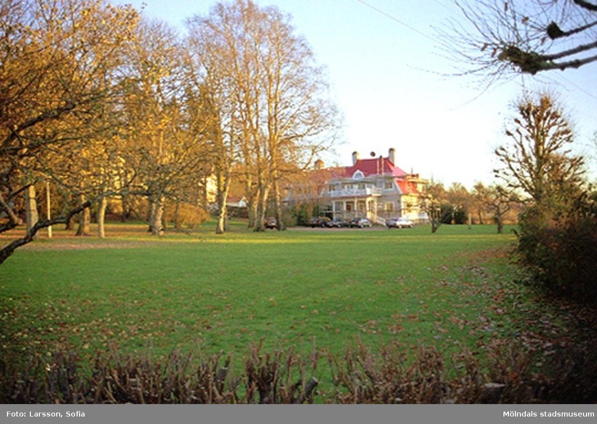 F.d Forsåker 1:122 samt dess stora trädgård på Brännåsvägen 2. Tillhörande Papyrusområdet.