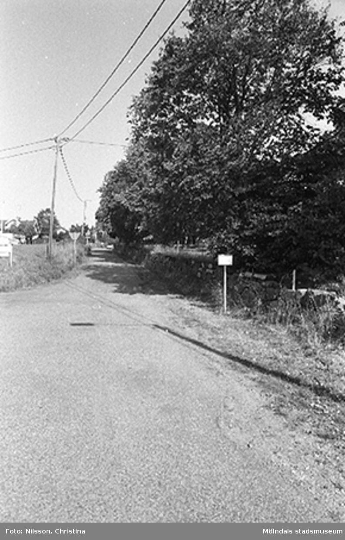 En väg.Omgivningen runt Werners fabriker, Annestorp, Lindome hösten 1994.