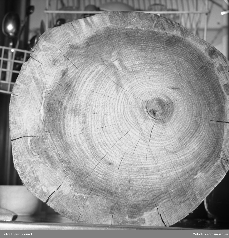Detaljfotografi av träådringar på trästock på Papyrus i Mölndal, 8/1 1960.