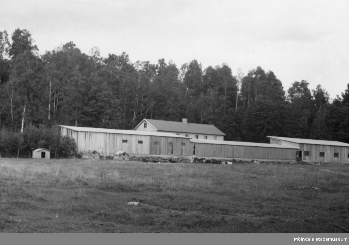 Byggnadsinventering i Lindome 1968. Greggered. Hus nr: 081D3021. Benämning: svinhus. Kvalitet: god. Material: plåt. Tillfartsväg: framkomlig.