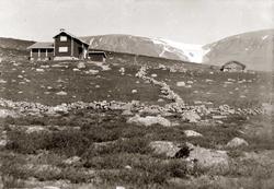 Hytte, Ustaoset, hyttegrend, steingjerder, steinmur, Eimeska