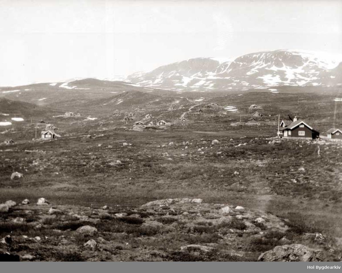Hyttegrend, Ustaoset, fjellveg, Fjellandskap, Hallingskarvet,