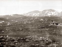 Hyttegrend, Ustaoset, fjellveg, Fjellandskap, Hallingskarvet