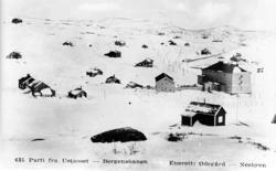 Tettstad, Ustaoset Hotell, vinter, jernbane, Bergensbanen, h