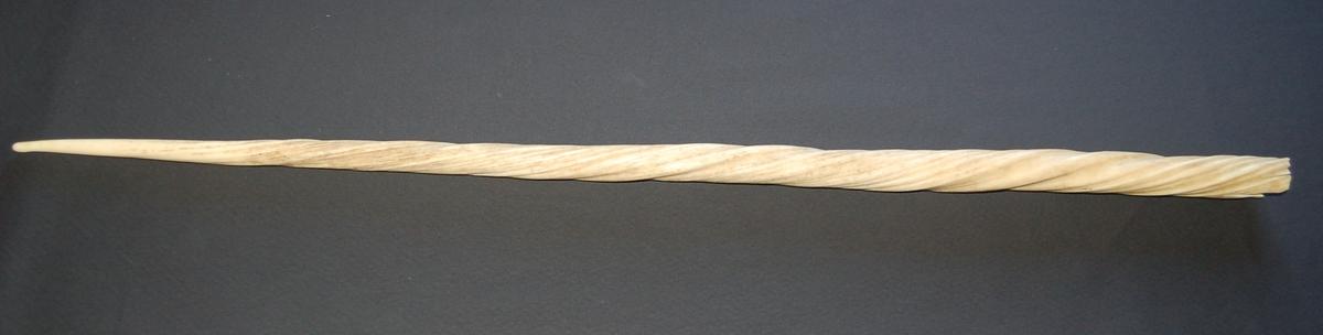 Spiralvridd spydspissformet tann