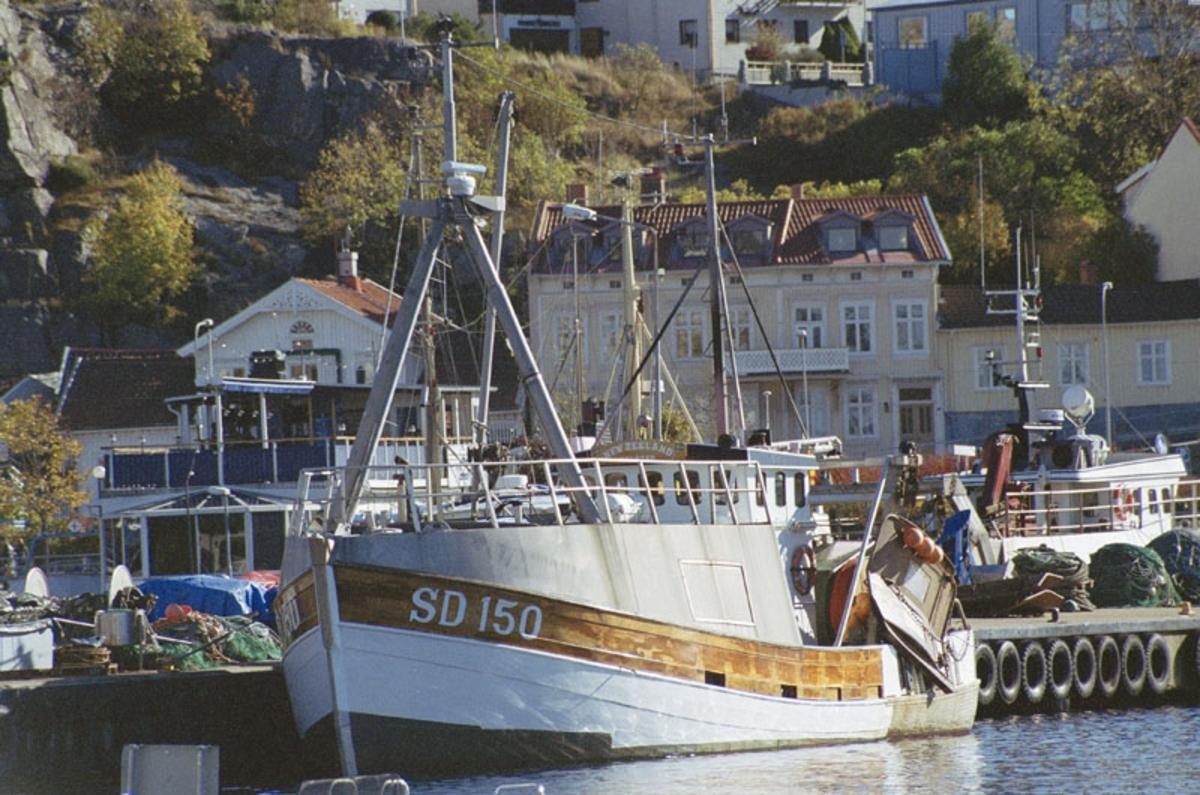 Fartyg: NEW ZEELAND