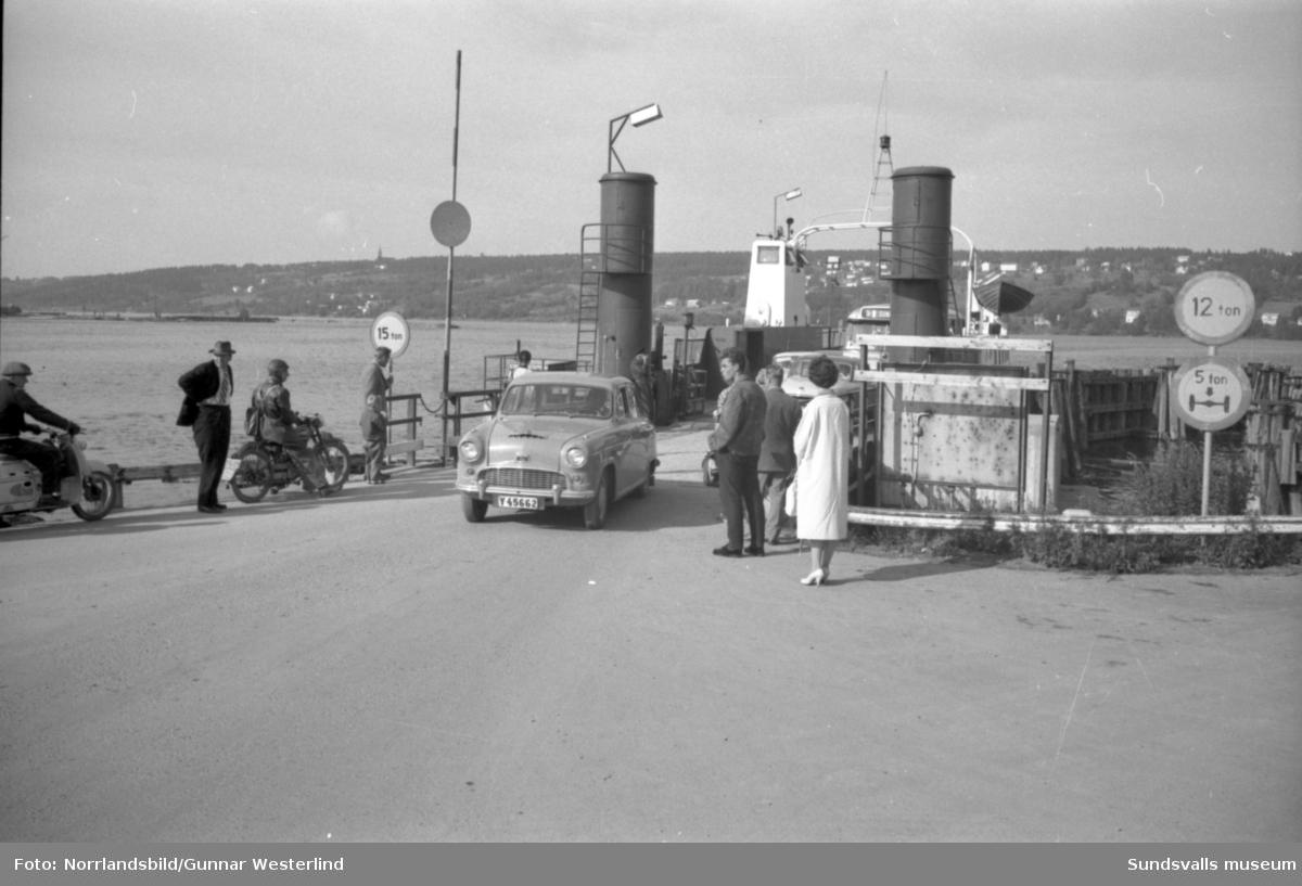 Långa köer till Alnöfärjorna innan bron byggdes.