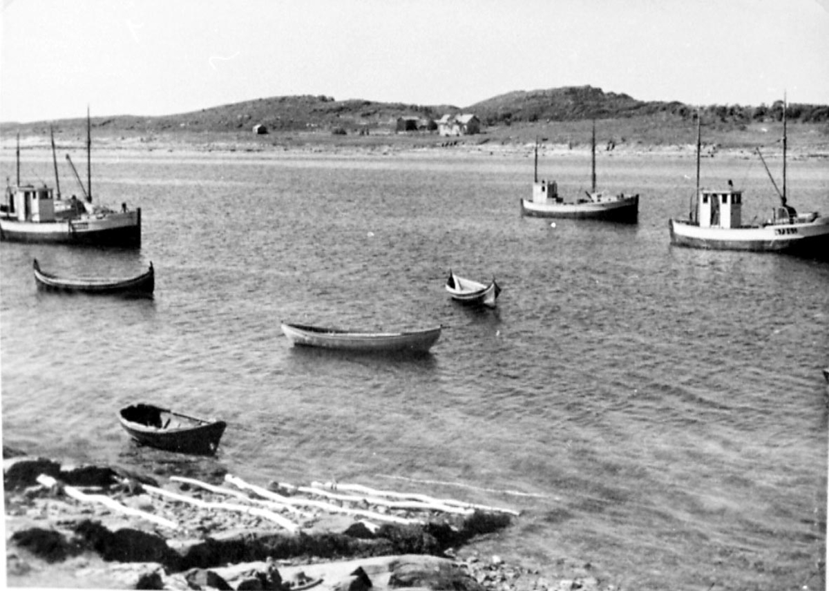 Flere fiskebåter og robåter fortøyd.