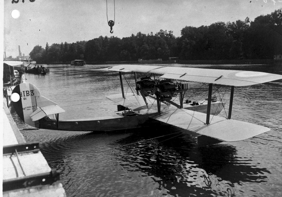Ett fly på vannet.