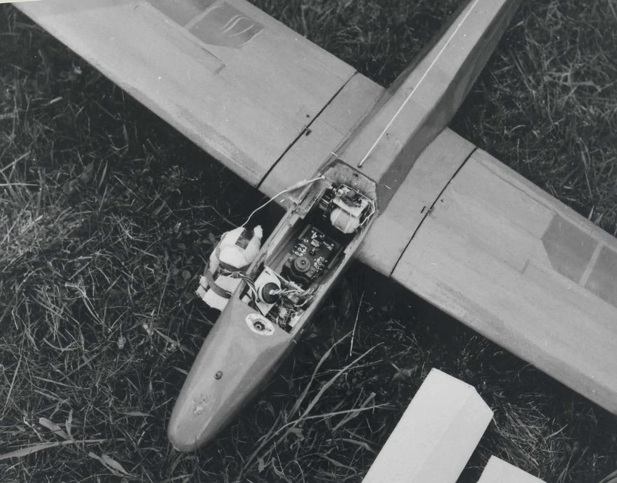 Ett modellfly, Bergfalke